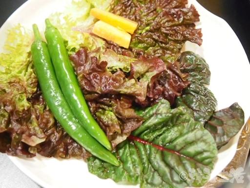 トルベギチプ チャドルバギ 野菜