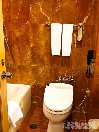 雙連 ホテル 国賓大飯店 アンバサダー