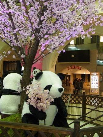 上野のパンダ