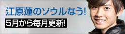 蓮blog_banner