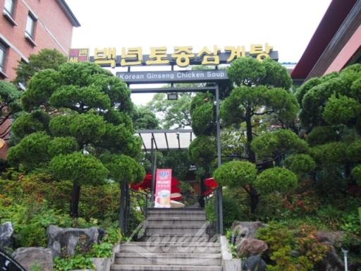百年土種参鶏湯-外観