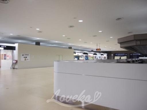 2016年12月格安ソウルの成田空港1