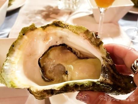 愛媛 宇和島産 巌牡蠣 岩牡蠣 海のミルク