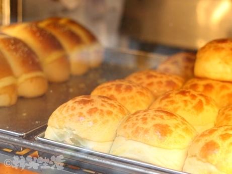 香港 湾仔 檀島珈琲 パイナップルパン