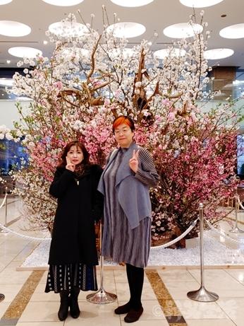 後楽園飯店 中華料理 コース フカヒレ 東京ドームホテル